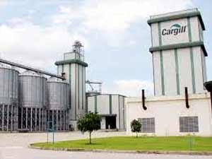 Lắp đặt cân ô tô 80 tấn sử dụng Powercell PDX tại nhà máy Cargill