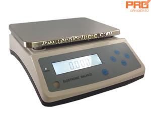CÂN ĐIỆN TỬ WT-X (3kg - 30kg/ 0.1g - 1g)